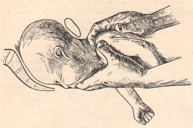 lyubiteli-lizat-piski